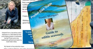 Pocket Guide to Edible Seaweed