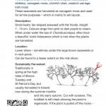 SeaweedGuideFlipBook-8