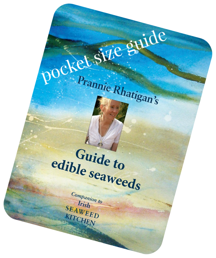 pocket-size-guide-shop