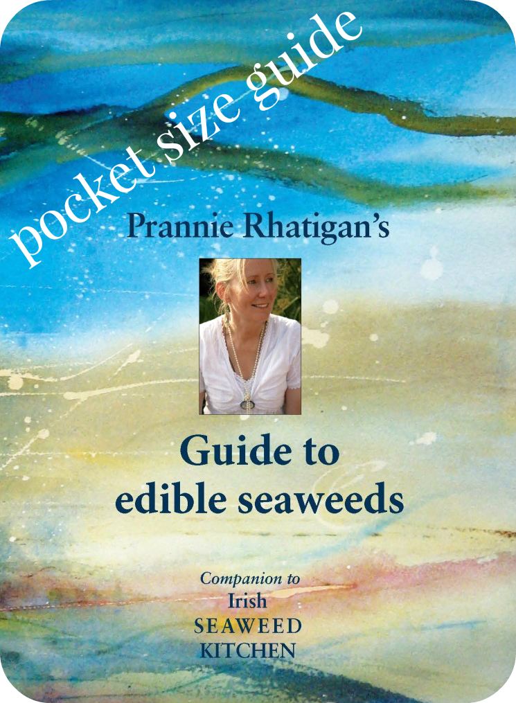 irish seaweed kitchen guide to edible seaweeds pocket size guide