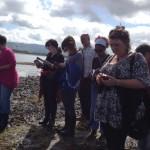 so sligo irish seaweed kitchen 2014 236