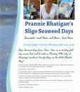 sligo seaweed days 171