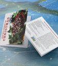 Christmas-Card-Image-2