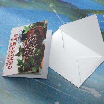Christmas-Card-Image-6