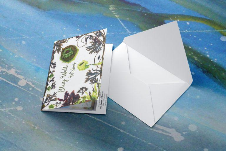Card-Image-6